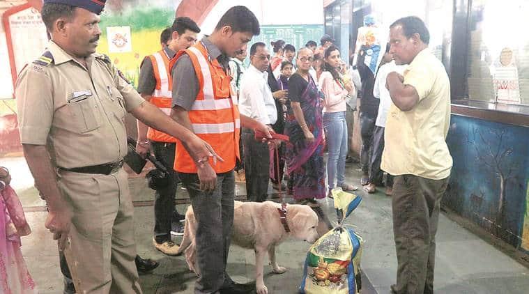 mumbai sniffer dogs, mumbai sniffer dogs grounded, mumbai on alert, mumbai city news
