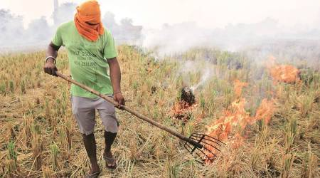 punjab news, punjab farmers hold dhana, stubble burning, punjab government, farmer unions, indian express