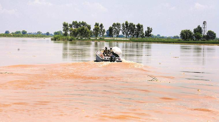 Green activist, Pollution board, industrial park, Sutlej river, Punjab news, Indian express news