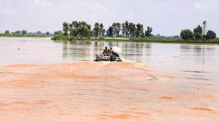 Green activist, Pollution board, industrial park, Sutlej river, Punjab news, Indian express news