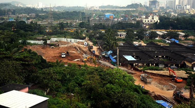 Aarey: SC stops felling of trees, State says have cut what's needed