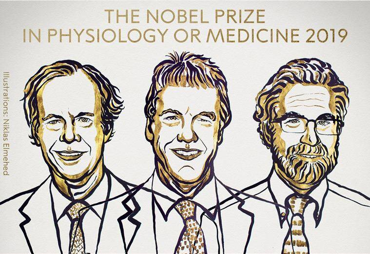 Kaelin, Ratcliffe and Semenza win 2019 Nobel Medicine Prize