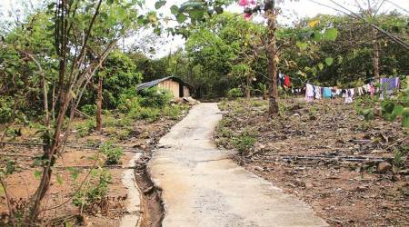 Hearing PIL, SC had ordered status quo on Aarey tree felling