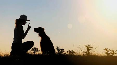 pets, health benefits of having pet, mental health, world mental health day, indian express, indian express news