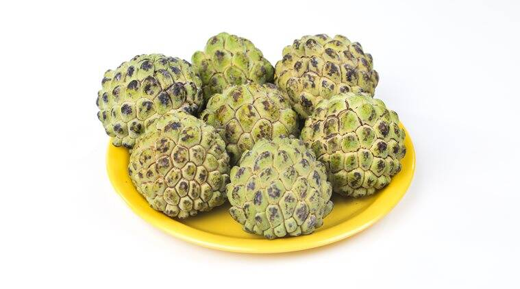 sitaphal, indianexpress, rujuta diwekar, indianexpress.com, cherimoya benefits, custard apple benefits, what is sugar apple, eat local, fruits in India,