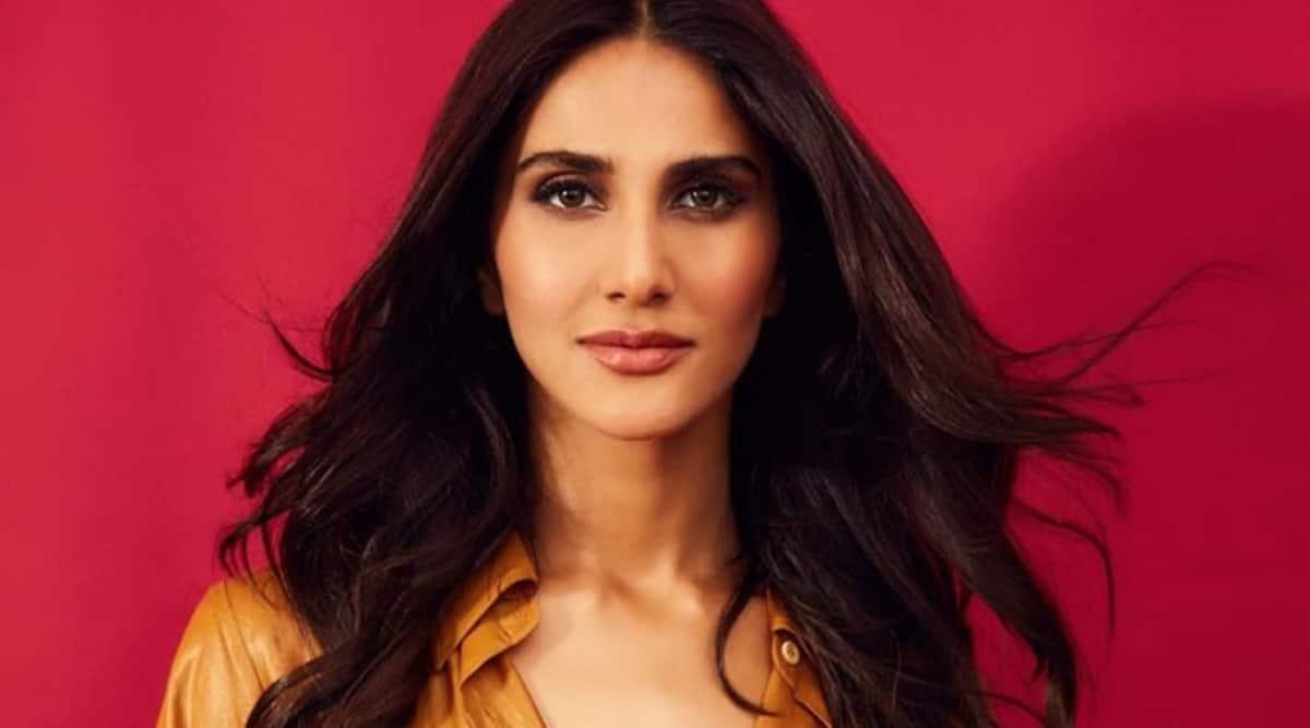 Vaani Kapoor Shamshera
