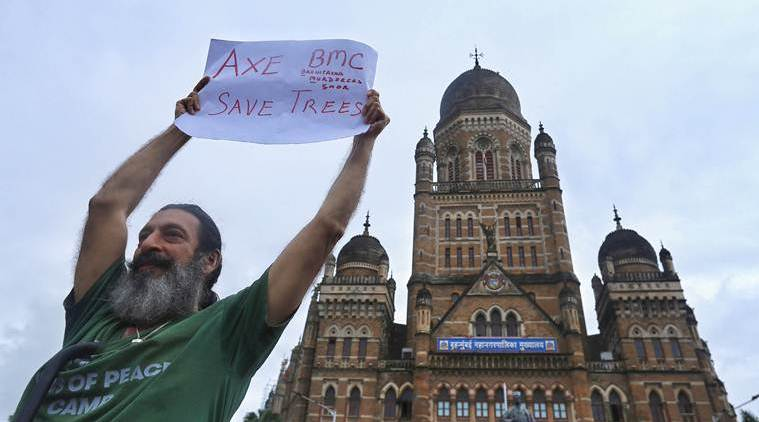 Bombay HC dismisses PIL challenging authority's decision to fell tress in Aarey