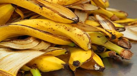 banana, banana peel, benefits, eating the peel, indian express, indian express news