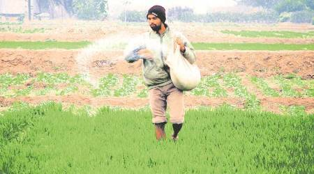 Why farmers don't like direct cash transfers