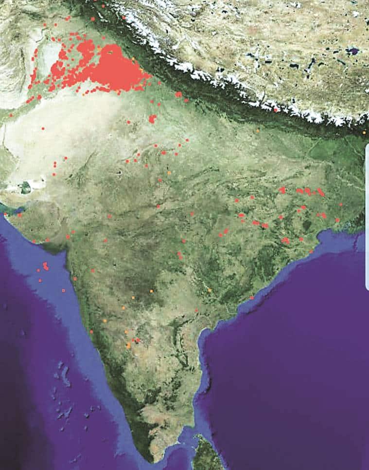 Delhi T20I will go ahead despite pollution concerns - Ganguly