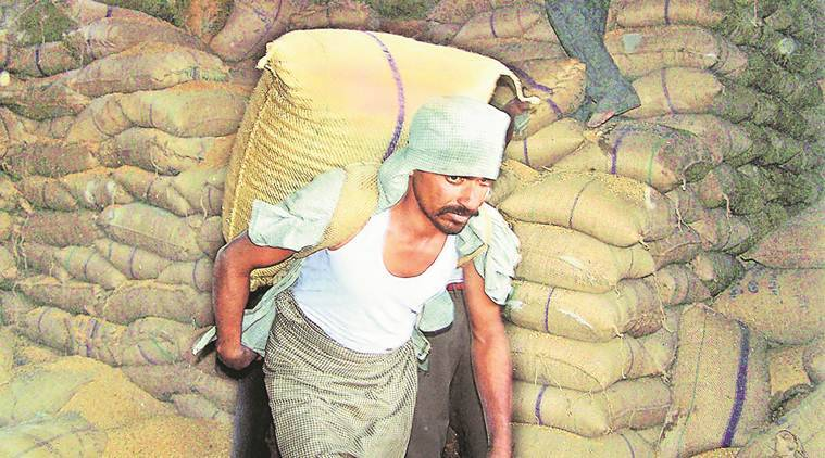 Granaries overflowing, Food dept's SOS to MEA: Send wheat, rice as aid to deserving countries