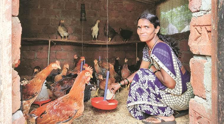 In Raigad, Maharashtra — women take up poultry farming, stop migration