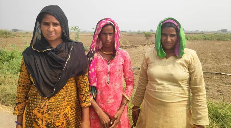 haryana assembly election, haryana assembly polls, nuh, nuh sex ration, nuh district, nuh health facilities