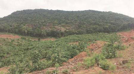 Gadchiroli villagers fear losing forest, way of life and livelihood after former mining minister is re-elected