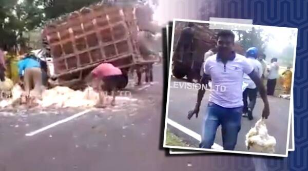 truck crash orissa, locals stela poultry truck crash, car accident, Sambalpur truck crash viral video, trending, indian express, indian express news