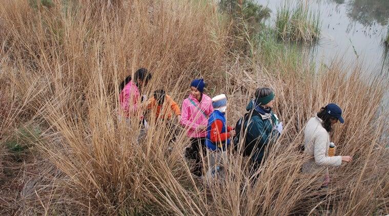 children environment, indianexpress, SundayEYE. EYE2019,David Attenborough,Singapore's Night Safari, ranjit lal column, ranjit lal birdwatcher, children and environment, nature love, birdwatching, sustainable living,