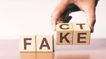 fake news, indianexpress, sundayeye, eye2019, fake news, Hello Kitty, nishant shah article, what is fake news, digital medium, cyber space, dark web,LOLCat