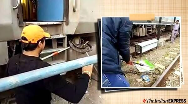 snakes on train, snake rescue, king cobra, king cobra rescue, snake rescued from train wheels, kathgodam railway station, viral videos, indian express news