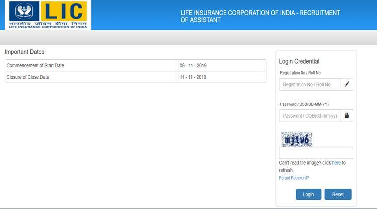 LIC Assistant pre-result 2019, lic assistant prelims result, licindia.in, lic careers, lic india result, lic assistant result 2019, lic jobs, govt jobs, sarkari naukri, sarkari naukri result, employment news