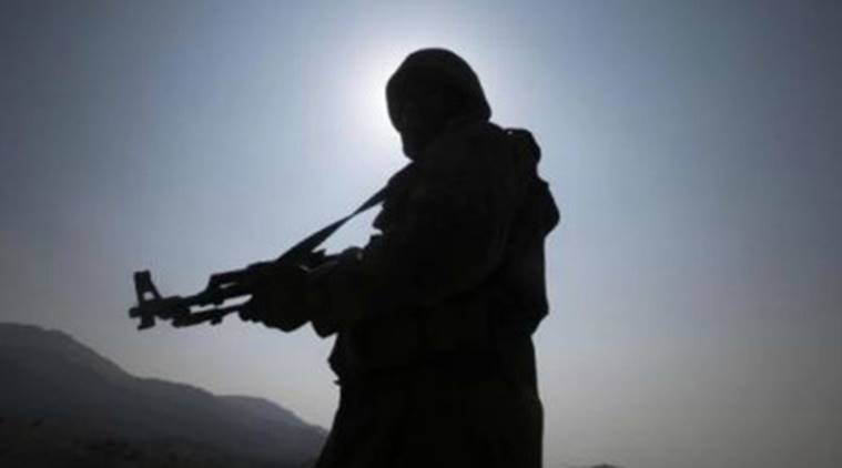 Islamic State group attempted suicide attack in India last year: US official