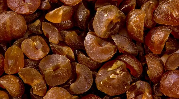 amla, indian gooseberry, indianexpress.com, indianexpress, health benefits of amla, diabetes, blood sugar, antioxidants, amla for hair, amla for skin, amla for digestion, how to make amla candy,