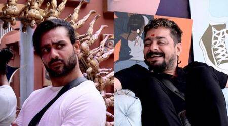 bigg boss 13 wild card entries