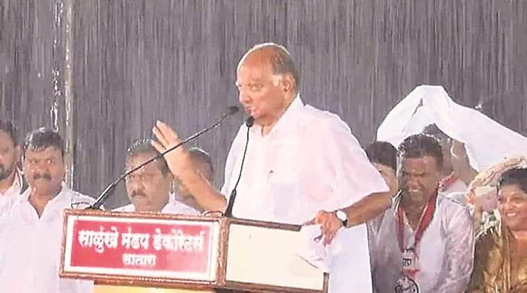 sharad pawar, sharad pawar rain speech, sharad pawar satara rally rain speech, sharad pawar news, maharashtra news, maharashtra political news