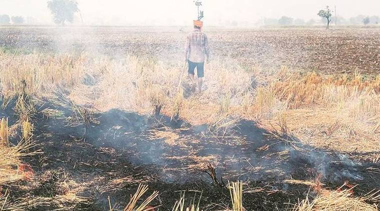 Punjab stubble burning, delhi air pollution, farm fires in Punjab, supreme court on stubble burning, indian express