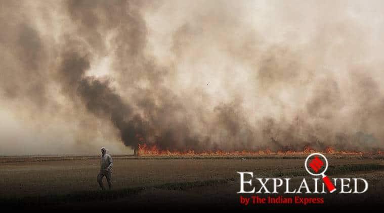 stubble burning, punjab stubble burning, pollution levels stubble burning, punjab govt farmers stubble burning fines
