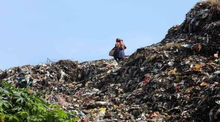 Chandigarh: Only 30% waste being segregated, city's Swachhata ranking may drop