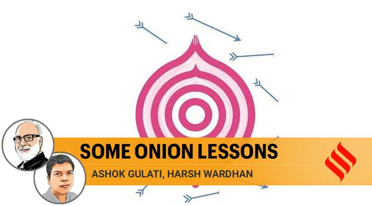 Storage facilities for rabi onions must be created on a massive scale