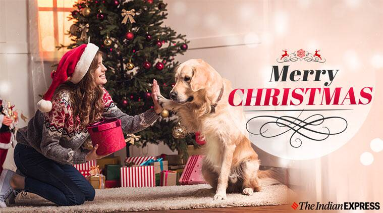Merry Christmas 2019 Wishes Happy New Year 2020 Advance