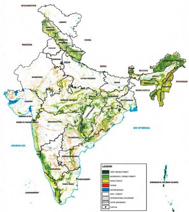 India State of Forest Report, forest cover in maharashtra, forest survey of india, india news, indian express