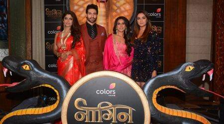 Meet the actors of Naagin 4