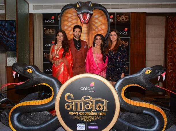 naagin 4 star cast, nia sharma, jasmine bhasin, sayantani ghosh