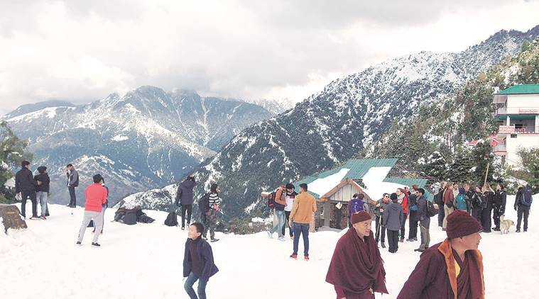 Triund hill, camping at Triund hill, himanchal pradesh tourism, snowfall, snowfall in himanchal pradesh, dharamshala news, indian express news