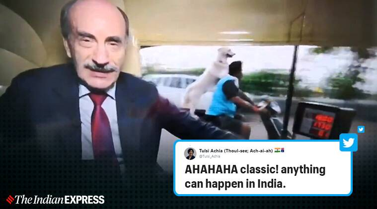 reporter photobombed by a dog riding scooter, BBC reporter photobombed by pillion rider dog, reporter photobombed by dog, funny photobombs, mumbai funny photobomb, just indian things, Mumbai, viral videos, Indian Express
