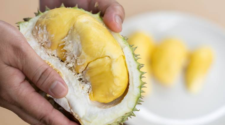 durian, durian fruit, health benefits, smell, use, indian express, indian express news