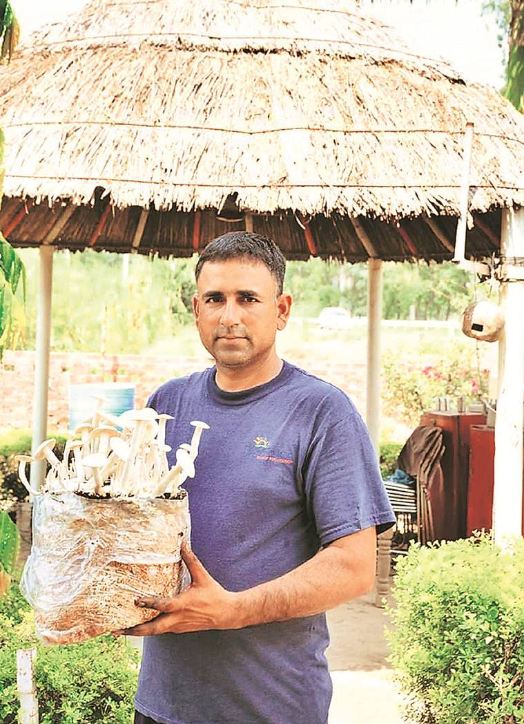 Kisan Divas: Big rewards for farmers who broke the mould points the road ahead for many