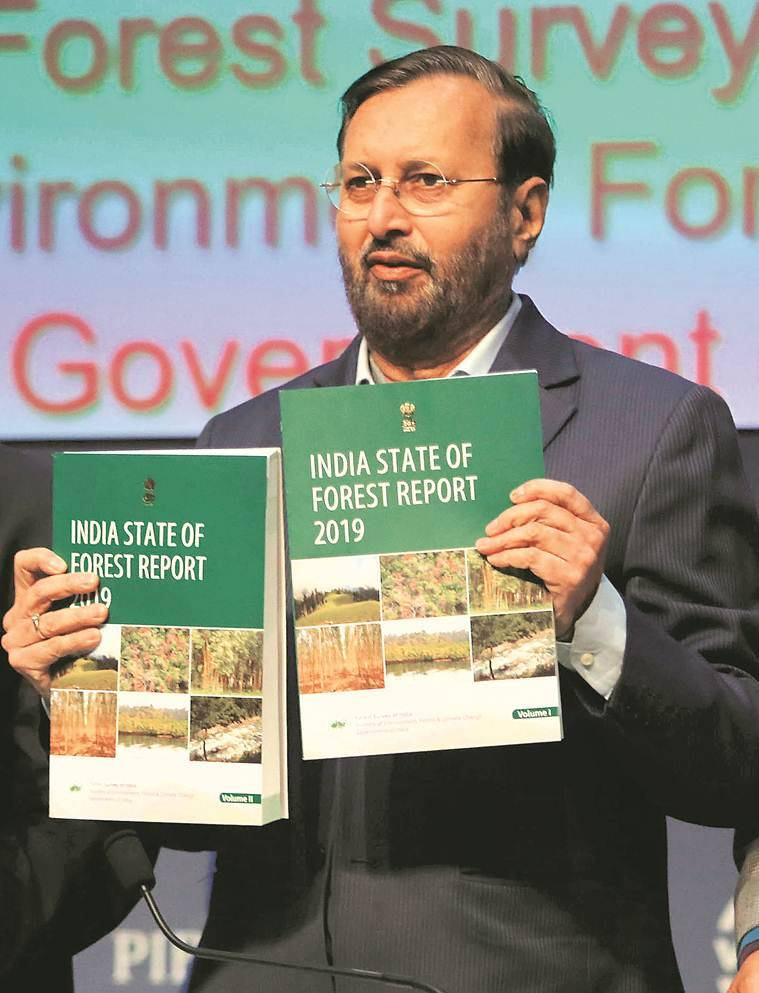Forest cover up but large tracts of dense forest have turned non-forest