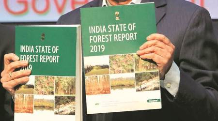 Green cover of Chandigarh up from 41 per cent to 46 per cent in 2019, says report