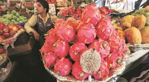 Prices take a hit as fruit supply, quality go down in Pune