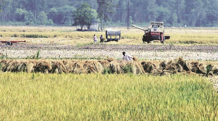 India farmers crisis, India GDP number, India GDP growth, Indian economy, Gross value added, Indian express