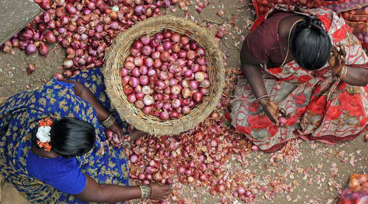 Onion prices today, Onion price today, Onion rate today, Why Onion prices are so high, Onion rate today Delhi, indian express news