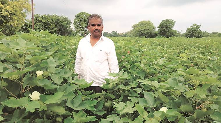 Pune farmers, Integrated pest management, crop protection, Pune pest management, Pune pest control, Pune news