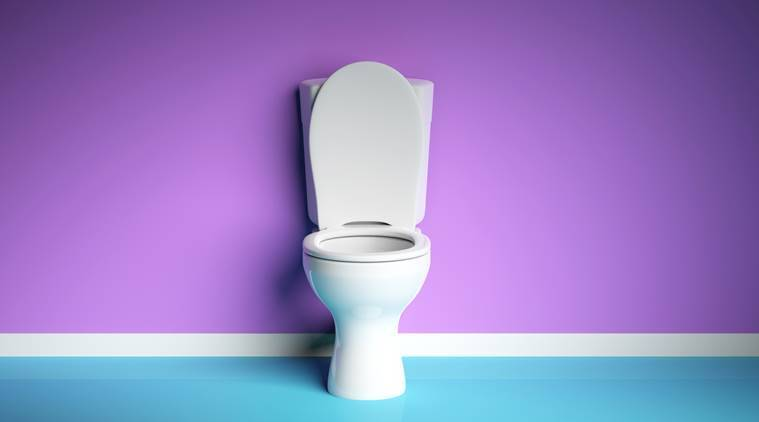 toilet seat, germs, everyday germs, household objects, indian express, indian express news