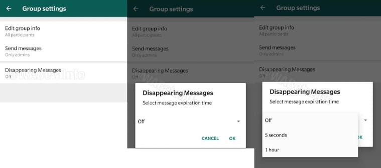 WhatsApp self destructive message