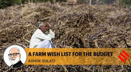 Move to cash transfers will lead to savings, put agriculture on sustainable growth path