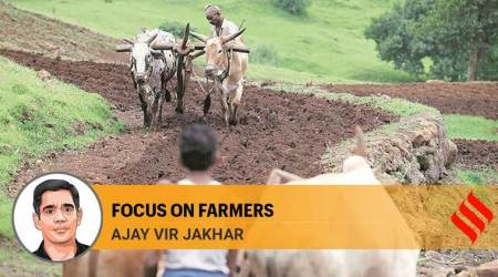 Government must engage in a collaborative effort with farmer groups