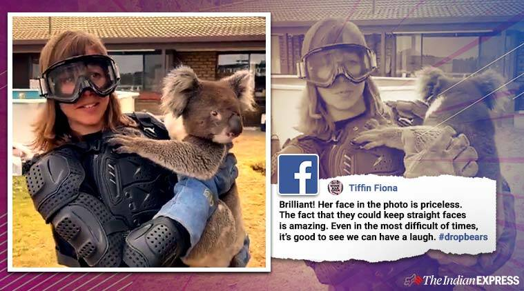 Watch Australians Prank Foreign Reporter Into Wearing Protective Gear To Carry Koala Trending News The Indian Express